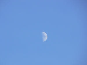blue sky and moon