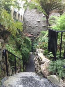 Fernery inside steps