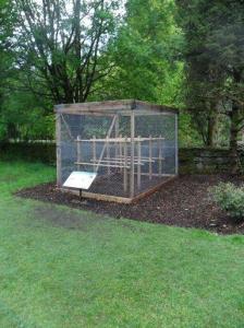 Lichen experiment  cage