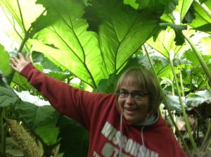 Renita under the Gunnera
