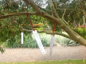 Poet Tree 13 Aug mr