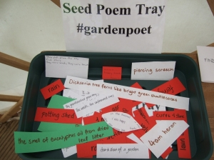 Sun 11Aug Seed Poem Tray today