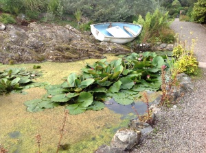 The pond with the boat with the water in it